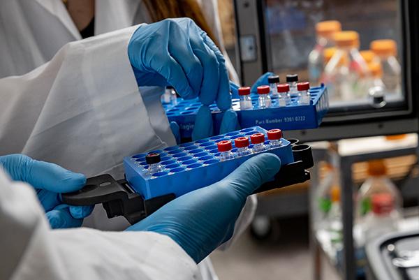 UND's Host-Pathogen CoBRE awarded $10.7 million renewal from NIH